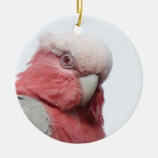 Galah Ceramic Ornament