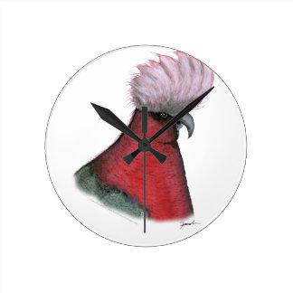 galah cockatoo, tony fernandes clocks