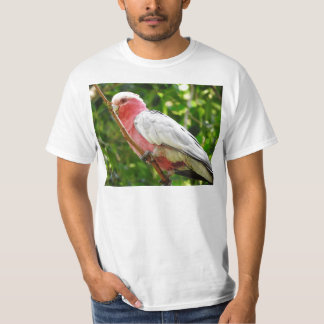 Galah (Rose Breasted Cockatoo) T-Shirt
