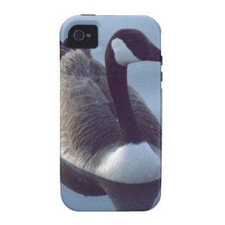 Galant Goose iPhone 4 Cover