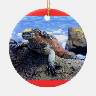 Galapagos Ceramic Ornament