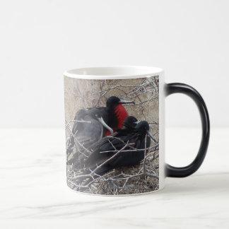 Galapagos Frigate Birds Magic Mug