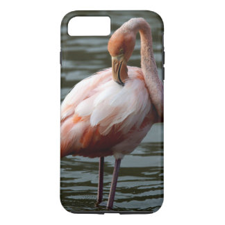 Galapagos Islands Flamingo iPhone 7 Plus Case