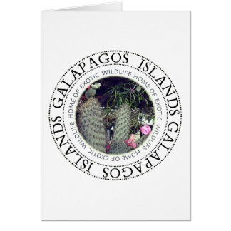 Galapagos Islands Flowering Cactus Note Card