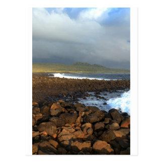 Galapagos Islands volcanic coastline Postcard