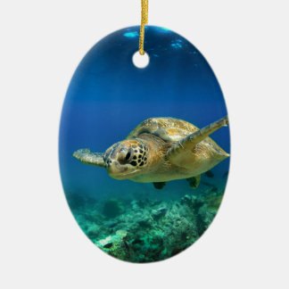 Galapagos paradise green sea turtle underwater ceramic ornament