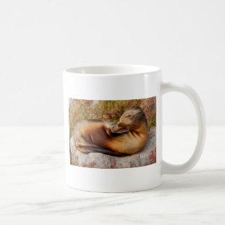 Galapagos Sea Lion Coffee Mug