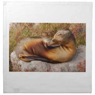 Galapagos Sea Lion Napkin