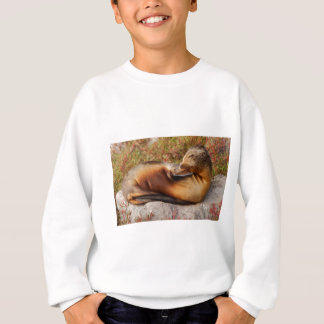 Galapagos Sea Lion Sweatshirt
