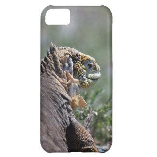 Galapagos yellow iguana iPhone 5C cover