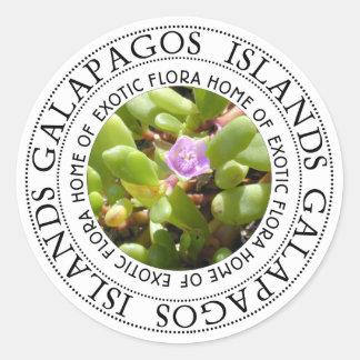 Galapgaos Islands Sesuvium Sea Purslane Stickers