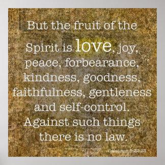 Galatians 5:22 - Fruit of the spirit Poster
