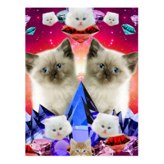 galaxy cat in diamond postcard