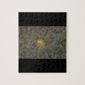 Galaxy. (galaxy;space;stars;color_Space Scenes Jigsaw Puzzle