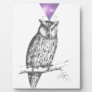 Galaxy owl 1 plaque