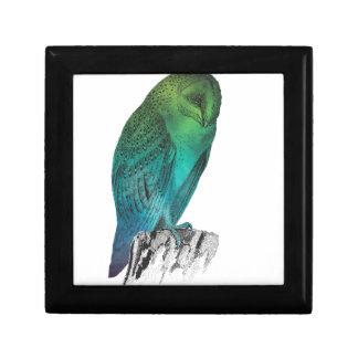Galaxy owl 2 gift box