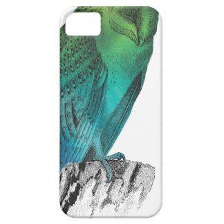 Galaxy owl 2 iPhone 5 cover