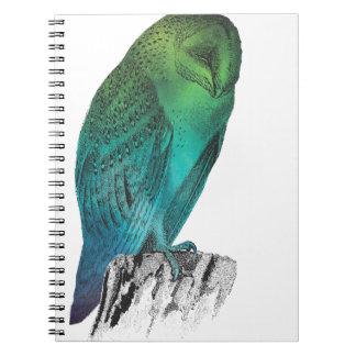 Galaxy owl 2 notebook