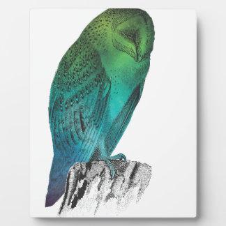 Galaxy owl 2 plaque