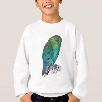 Galaxy owl 2 sweatshirt