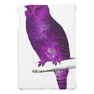 Galaxy owl 3 cover for the iPad mini