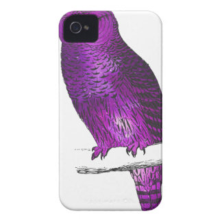 Galaxy owl 3 iPhone 4 cases