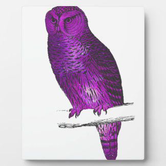 Galaxy owl 3 plaque