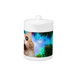 GALAXY SPACE CAT