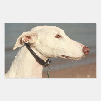 Galgo wind dog sticker