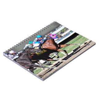 Gallant Bob Stakes 2015 Notebooks