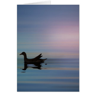 Gallinule Smooth Card
