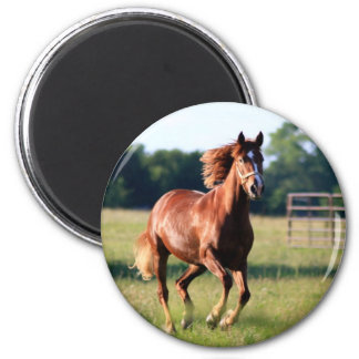 Galloping Horse Magnet