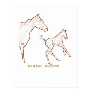 Galloping Horses: Mare and Foal Post Cards