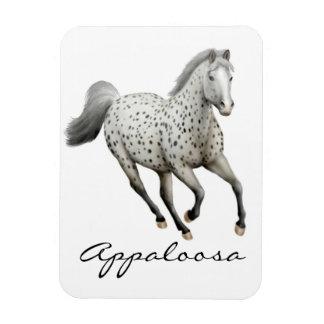 Galloping Leopard Appaloosa Horse Premium Magnet
