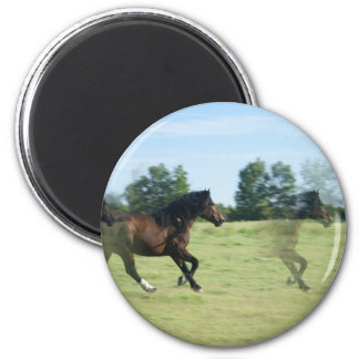 Galloping Mustangs Round Magnet