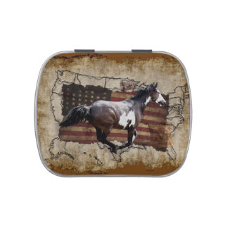 Galloping Pinto Paint USA Pony Express Horse