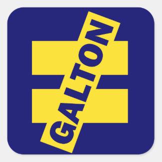 Galton Inequality bumper sticker