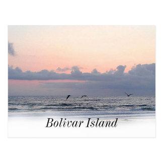Galveston beach Bolivar Island Postcard