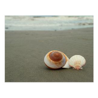 Galveston Island Postcard