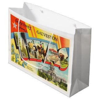 Galveston Texas TX Old Vintage Travel Souvenir Large Gift Bag