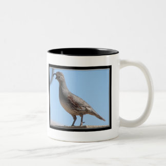 Gambel Quail Two-Tone Coffee Mug
