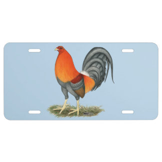 Gamecock Blue Red Rooster License Plate