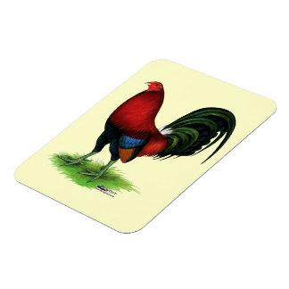 Gamecock:  Dark Red Rectangular Photo Magnet