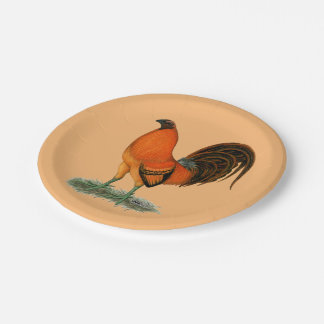 Gamecock Ginger Red Rooster 7 Inch Paper Plate