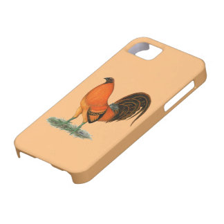 Gamecock Ginger Red Rooster Case For The iPhone 5