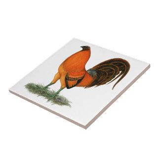 Gamecock Ginger Red Rooster Ceramic Tiles