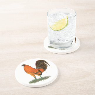 Gamecock Ginger Red Rooster Coasters