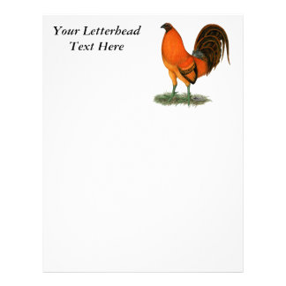 Gamecock Ginger Red Rooster Customized Letterhead
