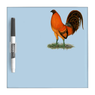 Gamecock Ginger Red Rooster Dry Erase Board