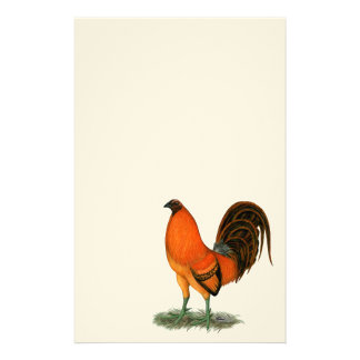 Gamecock Ginger Red Rooster Stationery